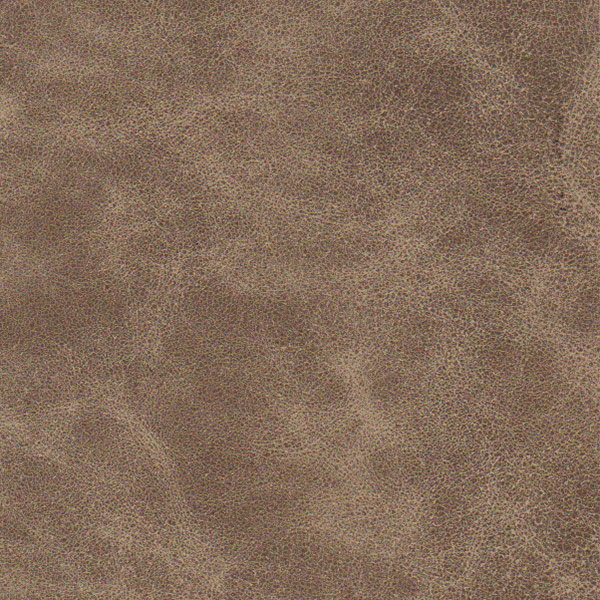 Distressed Cappuccino Leather cover